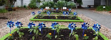 ounce of prevention fund of florida plant a pinwheel garden