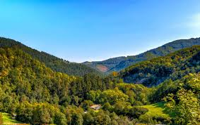 free picture sky nature wood mountain landscape tree valley