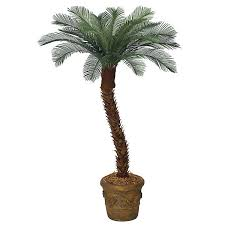 6 foot artificial outdoor cycas palm with 18 fronds polyblend