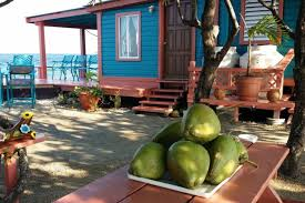 belize airbnb airbnb will let you rent your own off the grid caribbean island