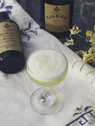 recipe early spring cocktail with gorse syrup from galway