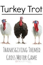 373 best turkeys turkeys everywhere images on