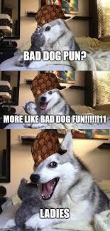 Pun Dog Meme - bad pun dog meme imgflip