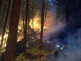 Wildfire Brookings by Fire Crews Battle Blazes In Unfavorable Conditions Klcc