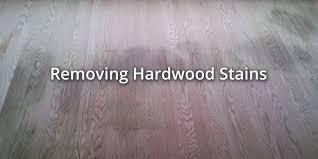 Urine Out Of Hardwood Floors How To Clean Dog Urine From Hardwood Floors 2 Acai Sofa