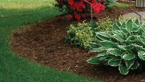 tilling is one chore you might be able to skip finegardening