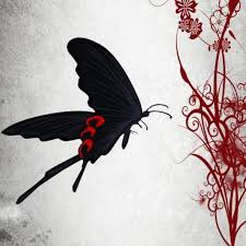 tweets with replies by black butterfly just a witch