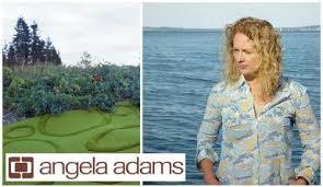 Angela Adams Rugs Angela Adams U2013 Design Sponge