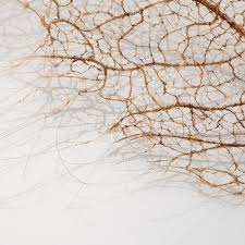 tree leaves made of stitched and knotted human hair colossal