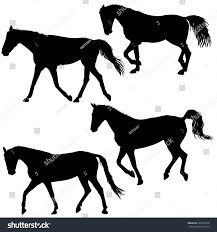 mustang horse silhouette set silhouette black mustang horse vector stock vector 568759876