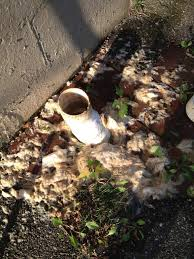 Sewage Coming Out Of Bathtub Plumbing Why Is Sewage Backing Up From This Outdoor Pipe Home