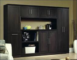 sauder homeplus basic storage cabinet dakota oak sauder homeplus storage cabinet dakota oak storage cabinet oak