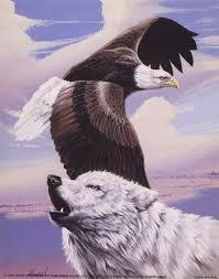 wolf eagle wolves wolf and paintings