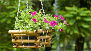 10 super hanging flower basket ideas garden talk nurserylive
