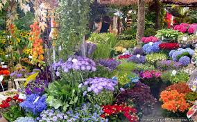 houses with beautiful flowers awesome gardens teorg gorgeous
