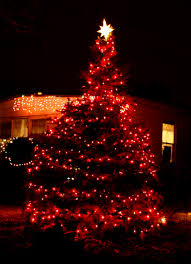 outdoor christmas tree with lights sacharoff decoration