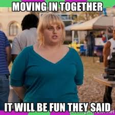 Moving In Together Meme - moving in together it will be fun they said fat amy meme meme