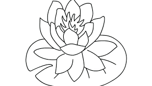 coloring pictures of hibiscus flowers hibiscus coloring pages hibiscus coloring pages free printable