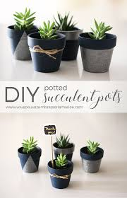 cute succulent pots i think i just found the perfect guest favor these adorable diy