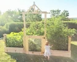 square foot gardening tips what we u0027ve learned after the first