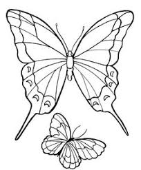 butterfly coloring pages coloring sheets for preschool butterfly coloring pages for my