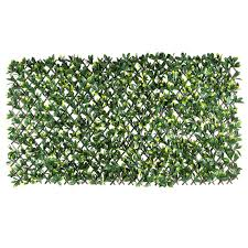 Gardenia Delivery Gardenia Expanding Trellis