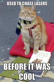 Hipster Cat Meme - used to chase lasers before it was cool hipster cat quickmeme