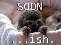 Soon Car Meme - funny sloth memes funny soon meme baby sloth baby animals