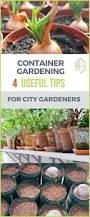 Types Of Urban Gardening Container Gardening 4 Useful Tips And How To Start One Gardens