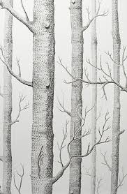 love this birch wood wallpaper i would frame this as a picture