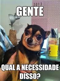 Meme Para Facebook - gente qual a necessidade de tanta beleza cachorro da