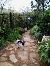 backyard ideas for dogs chic dog friendly backyard ground cover best 25 garden ideas on