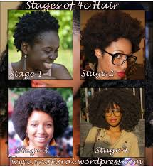 natural hair inspiration the stages of 4c hair natural hair