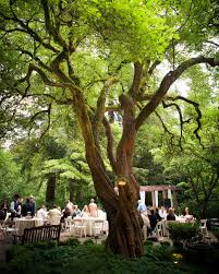 Outdoor Wedding Venues 18 Beautiful Botanical Garden Wedding Venues Martha Stewart Weddings