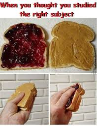 You Jelly Bro Meme - peanut butter jelly memes best collection of funny peanut butter