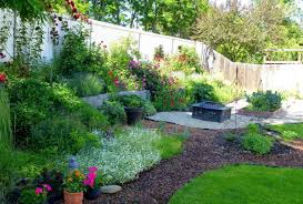 small grasses for landscaping best grasses for landscaping ideas