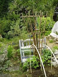 cucumbers minerva u0027s garden blog
