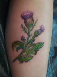 Scottish Tattoos Ideas Best 20 Thistle Tattoo Ideas On Pinterest Scottish Thistle