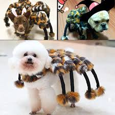 giant creepy spider dog halloween cosplay costume tarantula pet