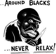 4chan Memes - racist trolls are launching operation google euphemism for n word