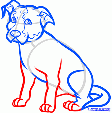 how to draw a sitting dog draw a dog sitting step by step pets