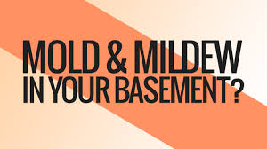getting rid of mold and mildew in your basement youtube