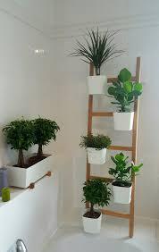 Wohnzimmer Einrichten Pflanzen Bildergebnis Für Satsumas Ikea Wintergarten Pinterest Ikea