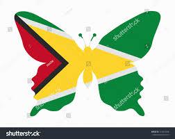 Guyana Flag Guyana Flag Butterfly Stock Vector 317023946 Shutterstock