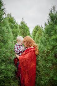 crystal reyns photography christmas tree farm minis l louisa va