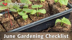 organic gardening how to videos organic gardening advice how
