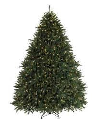 different types of christmas trees tree classics blog