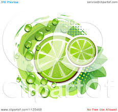 cosmopolitan clipart clipart of lime slices dew leaves and halftone on white royalty