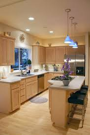Bamboo Kitchen Cabinets Brisbane Bamboo Kitchen Cabinets Contemporary With Flooring Pint