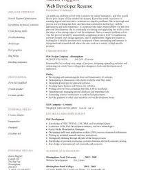 Sample Web Designer Resume by Trendy Inspiration Web Designer Resume 6 Web Cv Sample Example Job